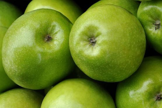 Tudósítás a Holland Alma Kft és a Tész-Ész étkezési rezisztens almanapjáról