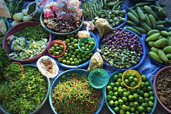Kockázatos kockáztatni a növényi károsítók behozatalát
