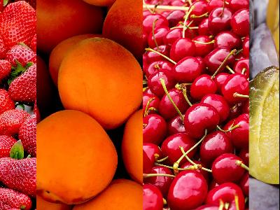 Gyümölcstermesztők Szakmai Konferenciája - 2019.03.20-21. - Sarlóspuszta