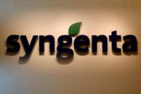Syngenta Technológiai javaslatok zöldségben, gyümölcsben