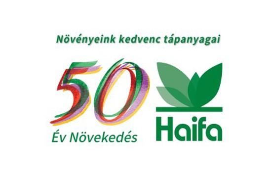 Haifa csoport 1967